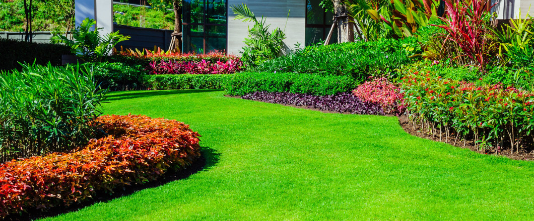 $25 Off Any Landscape Project When You Mention Our Website