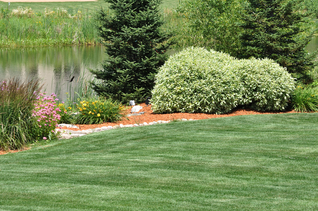 We work on residential and commercial lawns